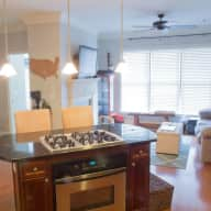 Comfortable Condo in Atlanta Highlands with two easy going cats