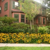 Cambridge, Massachusetts Pet/House sitting