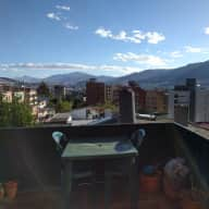 Pet sitter needed in Quito!