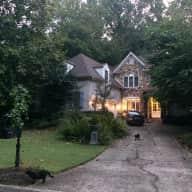 Large home in suburban Atlanta, 2 friendly, healthy cats.