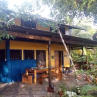 Costa Rica retreat with 3 carefree dogs and a kitten looking for nature loving sitters