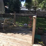 Pet sitter needed in Saskatoon, Canada