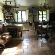 Pet sitter for 3 cats in country house in Blackdown Hills AONB. Devon/Somerset Border.