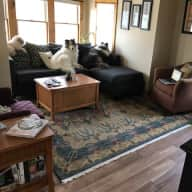 Three Pup, Two Bedroom Bungalow in Walkable Madison, Wisconsin