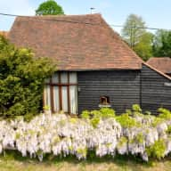 Cat and House Sitter.  Converted barn, 15 minutes from Rye by the Sea, East Sussex