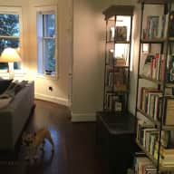 Ferociously Cute Frenchie in a Huge 1-Bedroom near the U.S. Capitol