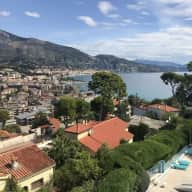 Care for cats on the Cote d'Azur