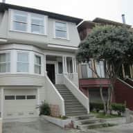Chocolate Labrador in San Francisco