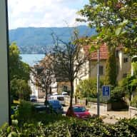 Lake view in Zürich; now w/ Hi-speed WiFi - 2br/1ba