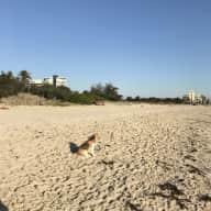 Beach couple haven close to Melbourne CBD