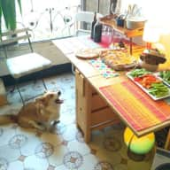 Sitter for our corgi in quiet neighborhood Barcelona (Gracia)
