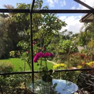 Tropical  Paradise    In sunny, warm Delray Beach ,Florida. I have created a garden to enjoy as an Eden to escape to. My home is in a safe and quiet mixed age   community,that is only about 7 minutes to a very  fun and charming old down town.