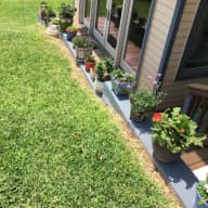 Beat the Cold in Austin, TX - Pet & House sitter