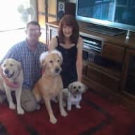 Pet sitter required for our 3 dogs from 7/10/17 to 17/10/17 in Bracken Ridge, on the north side of Brisbane.