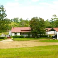 beautiful, tranquil acreage with super friendly animals