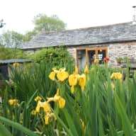 House and pet sitting for short breaks Cornwall/Devon border