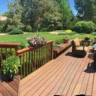 Luxury home in suburban Denver with senior Dachshund and 2 year old Bichon