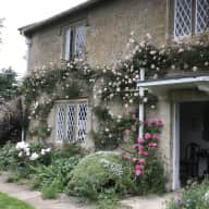 House/Pet Sitter  needed for two dogs (lurcher and Labradoodle).  Lovely House in Dorset countryside.