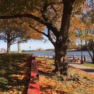 Stay with Kona on Roosevelt Island in NYC