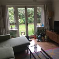 Lovely cat and cosy flat needs sitting in London N4!
