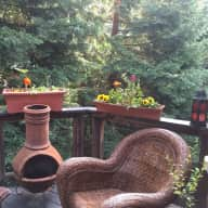 Urgent care for 1 cat in an Oakland Hills dreamy getaway