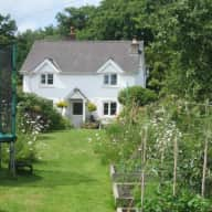Cosy cottage in the beautiful wye valley seeks cat companion
