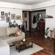 Loveable kitty in 2 bedroom apartment facing a lovely park in Porto Alegre, Rio Grande do Sul