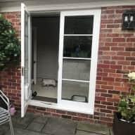 House & Kitten Sitting in Sheffield