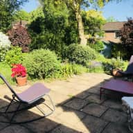 Sitters needed for gorgeous Jack Russell dog and 2 Guinea Pigs in lovely family home in historic Winchester, UK.