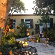 House/pet sitter needed on a beautiful property on the island of Eleuthera in The Bahamas