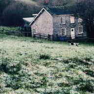 A cottage up a Welsh hill and a dog and a cat.