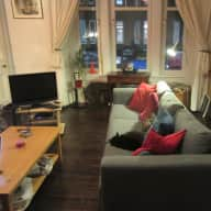 A cosy week in Glasgow with Angelo the Cat