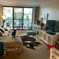 Cat sitting for 2 cats in an apartment with water views