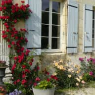 Country House in the middle of beautiful Cognac vine region
