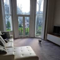 Pet and House Sitter in Little Venice, London W9