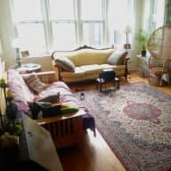 Chicago House/Cat Sitter