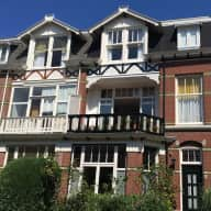Pet sitter required for two cats in lovely mansion in The Hague (November).
