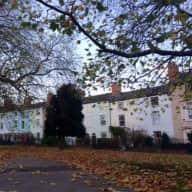 House / Catsitter wanted for Central Nottingham British Shorthair