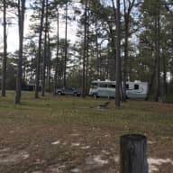 Ever want to try a tiny home?  Come stay in our 36 foot motorhome with our 2 service pups in the Panhandle of Florida.