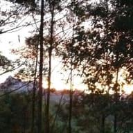 5 Weeks in Tweed Valley, Northern NSW