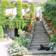 Beautiful house in South West France and a mix of wonderfull animals to cuddle great gardens and Pool .