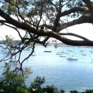 House Sitter needed for home on Lake Macquarie