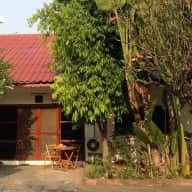 Dog-sitter needed in quirky (in a good way) Chiang Mai home