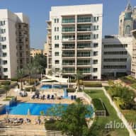 1 dog + 2 cats looking for a pet sitter in quiet, convenient resort-like community in Dubai!