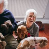 Sitter to look after house and animals in a village location