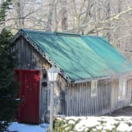 Pet and House sitting in  beautiful country setting in south eastern Ontario CANADA