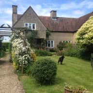 Housesitter/s required for 2 dogs in a lovely Cotswold village not far from Cirencester and Tetbury