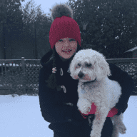 Dog sitter for Barney the Bichon