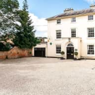Henley-on -Thames, spacious house with Cody, 3 month old Norfolk terrier