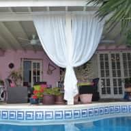 4 weeks house & pet sitting in Cyprus